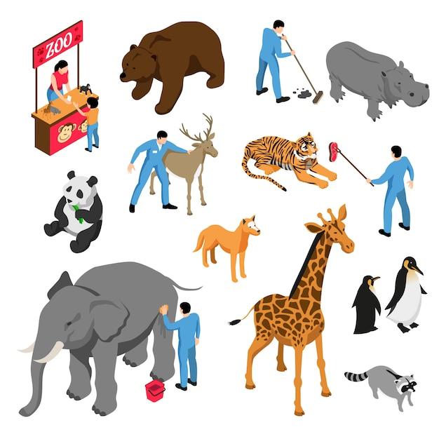 Insieme isometrico di vari animali e lavoratori dello zoo durante l'attività professionale isolata Vettore gratuito