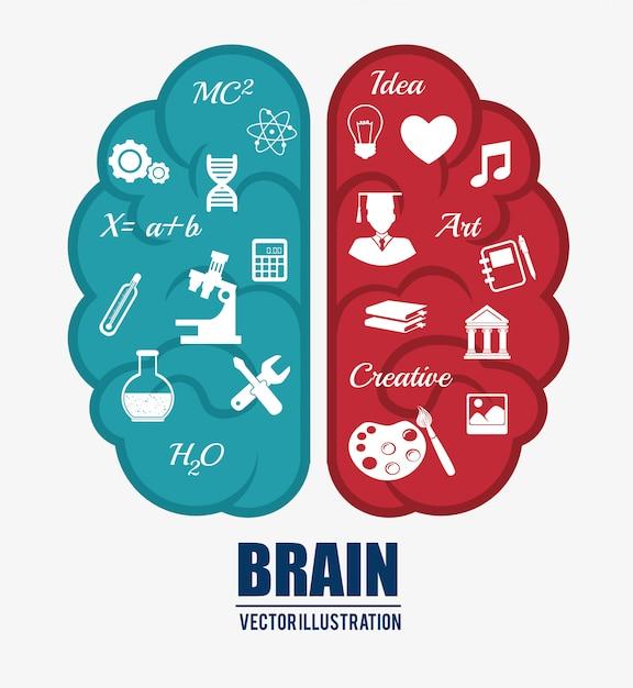 Intelligenza del cervello umano Vettore Premium