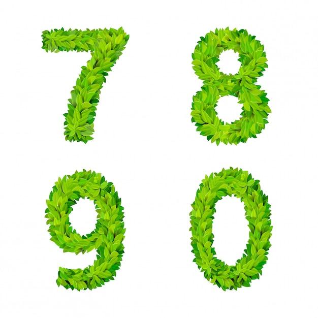 L'erba di abc lascia il cartello moderno della natura degli elementi di numero della lettera che segna l'insieme deciduo fogliare frondoso. 7 8 9 0 raccolta di caratteri latini fogliari fogliati naturali latini alfabeto inglese. Vettore gratuito