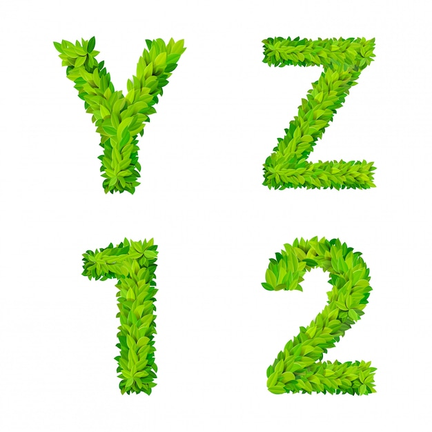 L'erba di abc lascia il cartello moderno della natura degli elementi di numero della lettera che segna l'insieme deciduo fogliare frondoso. yz 1 collezione di caratteri latini latini con lettere naturali fogliate e foglia naturale. Vettore gratuito