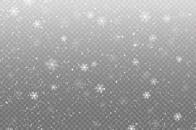 La neve cade su trasparente Vettore Premium