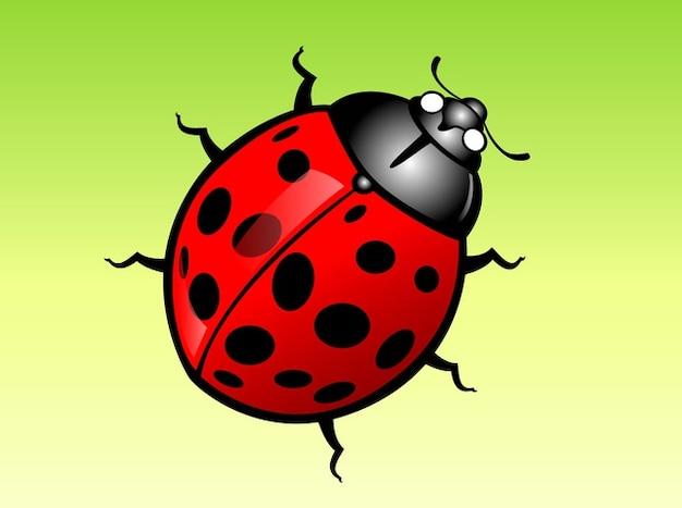Lady bug crawl vettore cartone animato scaricare vettori
