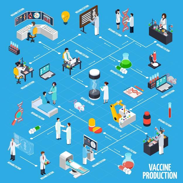 Layout di infografica di produzione di vaccini Vettore gratuito