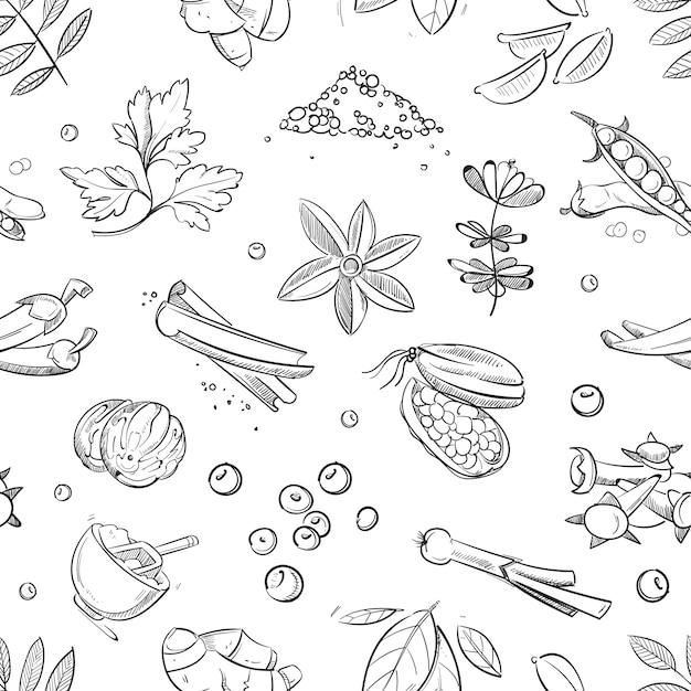 Le erbe e le spezie fresche scarabocchiano disegnato a mano Vettore Premium