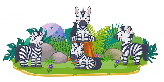 Le zebre stanno giocando insieme nel giardino Vettore Premium