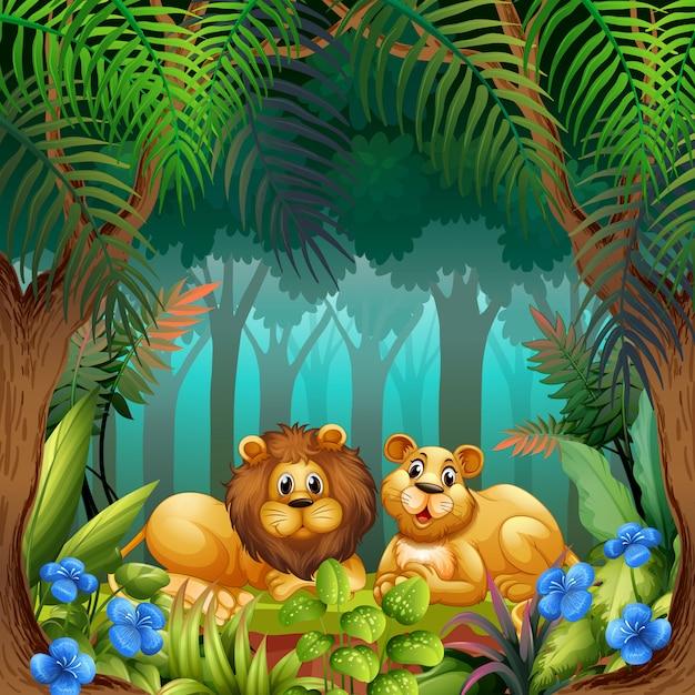 Leone nella giungla Vettore gratuito