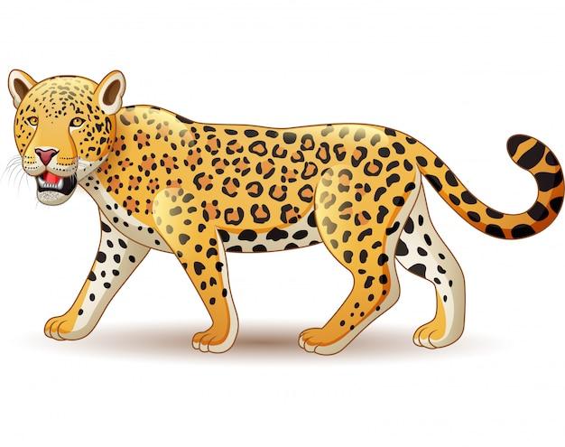 Leopardo del fumetto isolato su fondo bianco Vettore Premium