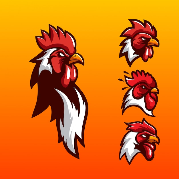 Logo design gallo Vettore Premium