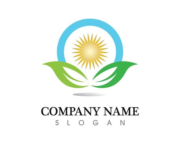Logo vettoriale foglia albero Vettore Premium