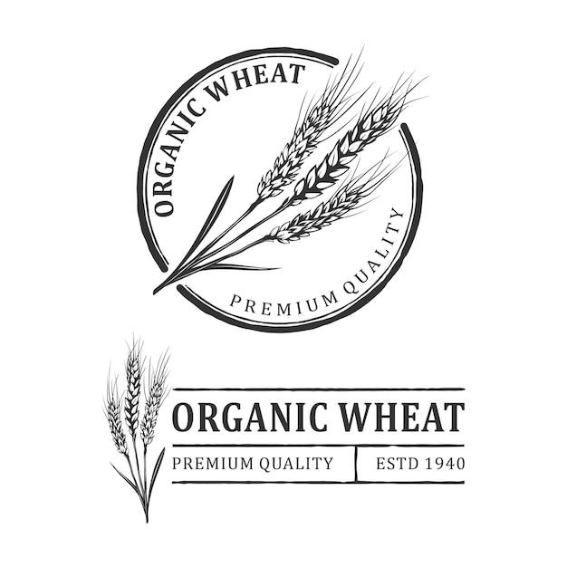 Logo vintage di grano Vettore Premium