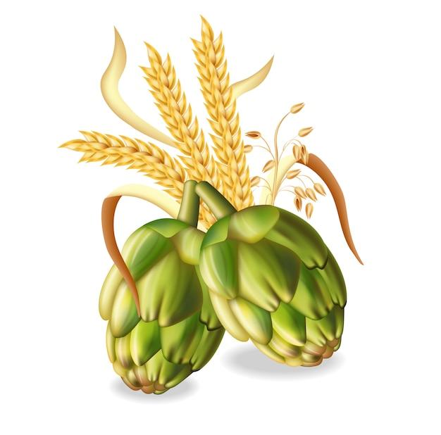Luppolo e spighe di grano Vettore Premium