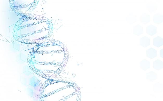 Maglia della struttura delle molecole del dna del wireframe su fondo bianco. concetto di scienza e tecnologia Vettore Premium