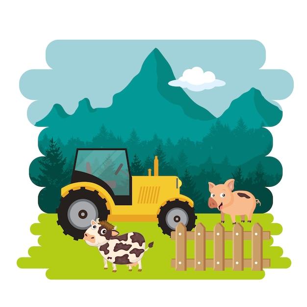 Maiale e mucca in piedi accanto al trattore Vettore Premium