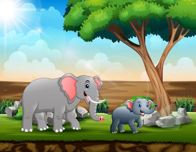 Mamma e giovani elefanti nella savana Vettore Premium