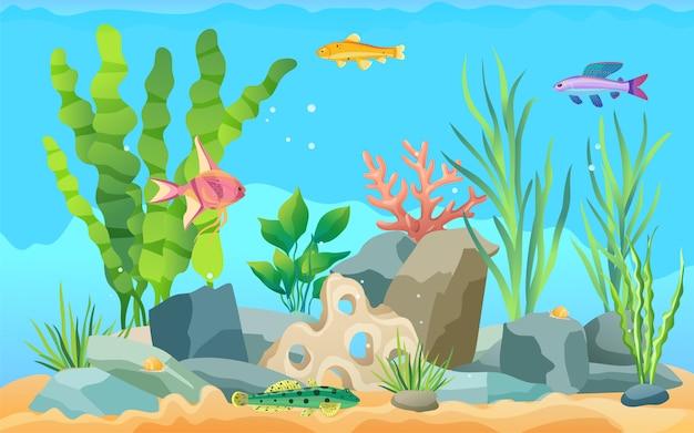 Manifesto promozionale stabilito di pesci dell'acquario del fumetto colorato Vettore Premium