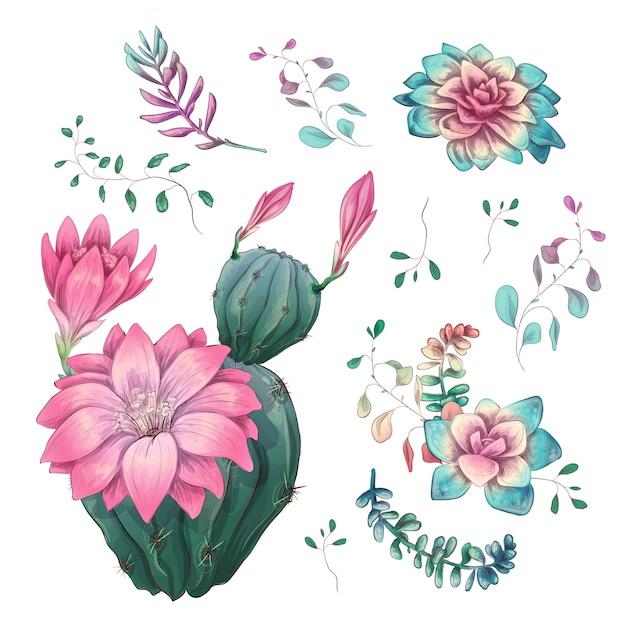 Mano di cactus disegnato su uno sfondo bianco Vettore Premium