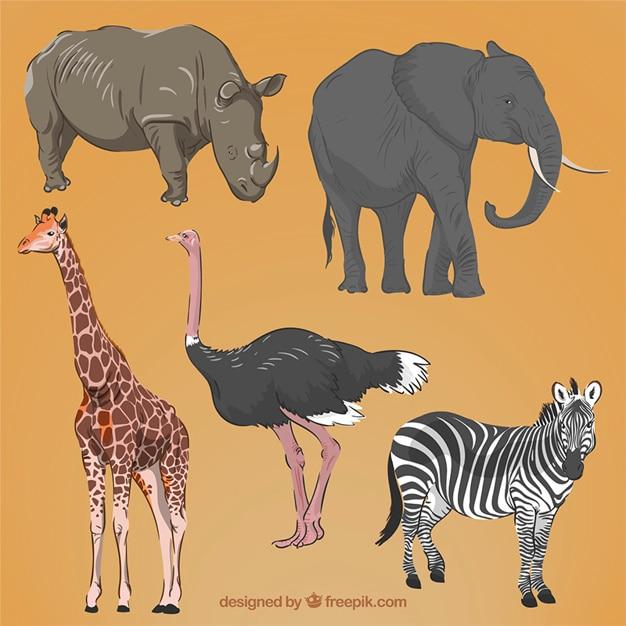 Mano realistica disegnate animali africani Vettore gratuito
