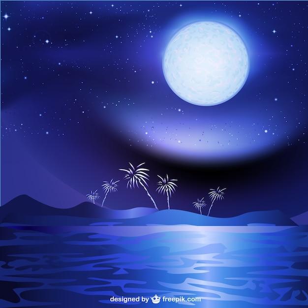 Mare Di Notte Sfondo Paesaggio Scaricare Vettori Gratis