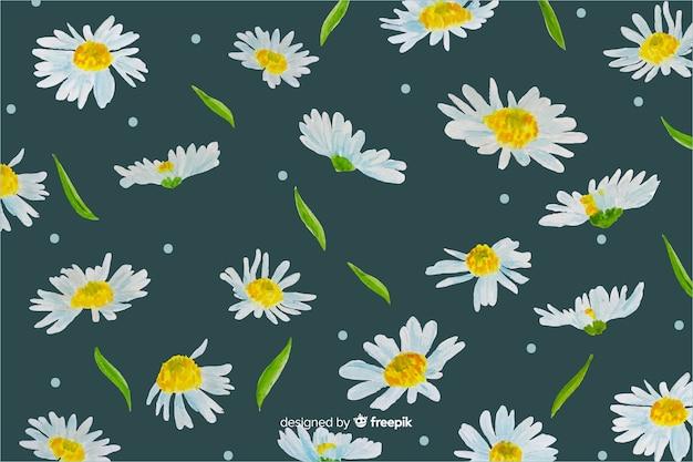 Margherite sfondo decorativo disegno ad acquerello Vettore gratuito