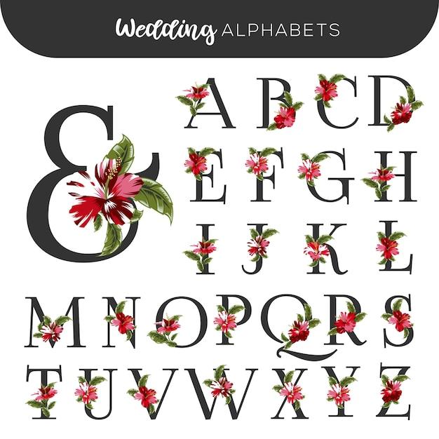 Matrimonio floreale alfabeti rosso ibisco Vettore Premium