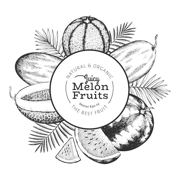 Meloni e angurie con foglie tropicali. illustrazione di frutta esotica di vettore disegnato a mano. frutto in stile inciso. cornice botanica retrò. Vettore gratuito