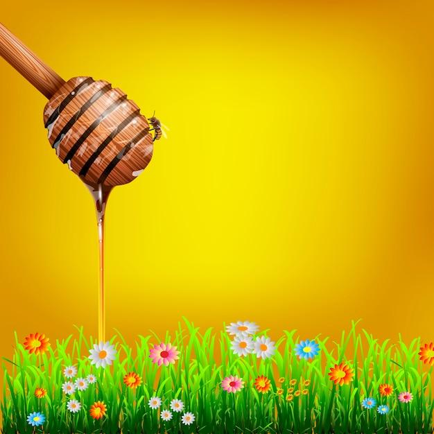 Merlo acquaiolo del miele con l'ape e l'erba verde con i fiori Vettore Premium