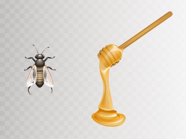 Miele fresco che scorre e gocciola dal mestolo e l'ape di legno Vettore gratuito