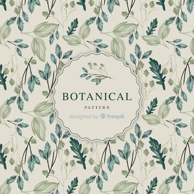 Modello botanico vintage Vettore gratuito