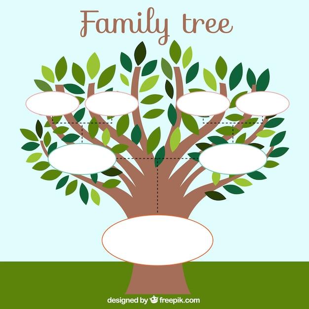 Modello di albero genealogico con foglie Vettore gratuito
