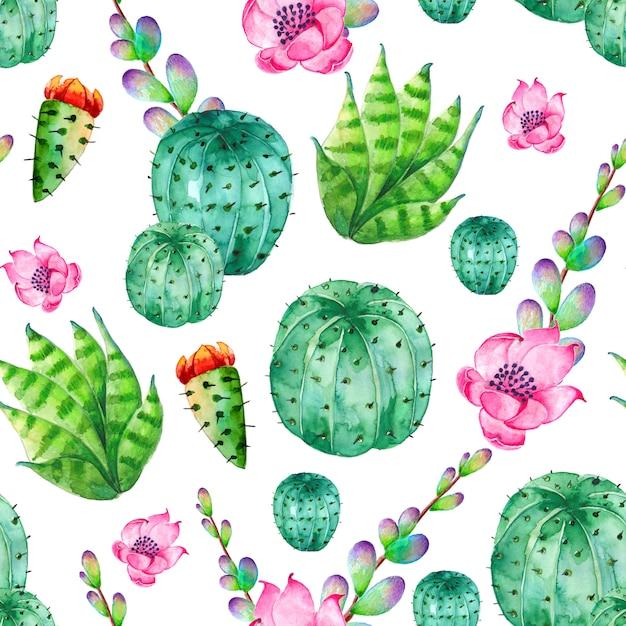 Modello di cactus dell'acquerello con fiori Vettore Premium