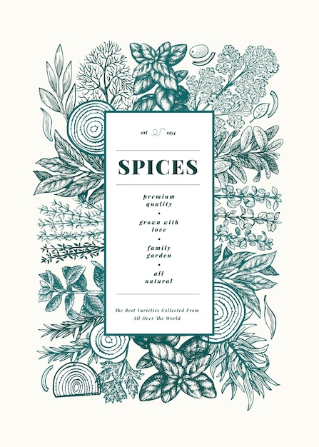 Modello di cornice di menu di erbe e spezie culinarie Vettore Premium