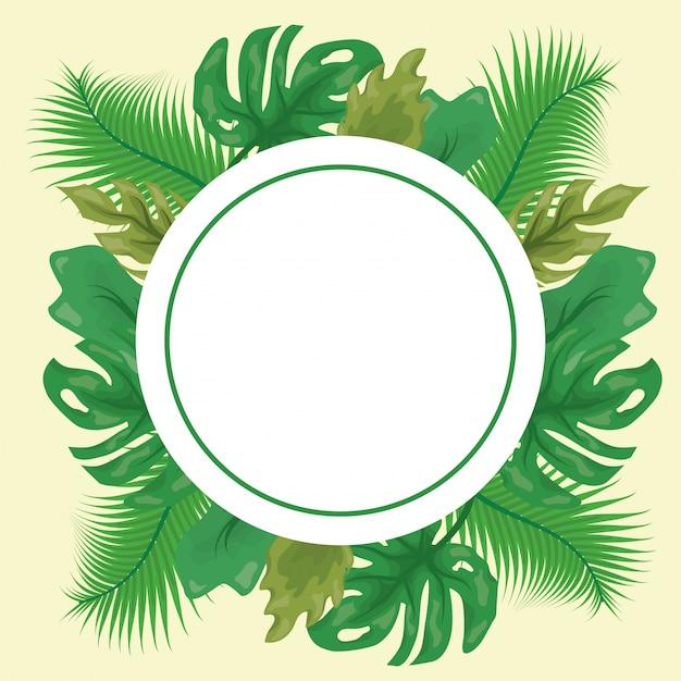 Modello di foglie tropicali verdi con etichetta rotonda Vettore gratuito