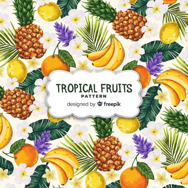 Modello di frutta tropicale realistico disegnato a mano Vettore gratuito