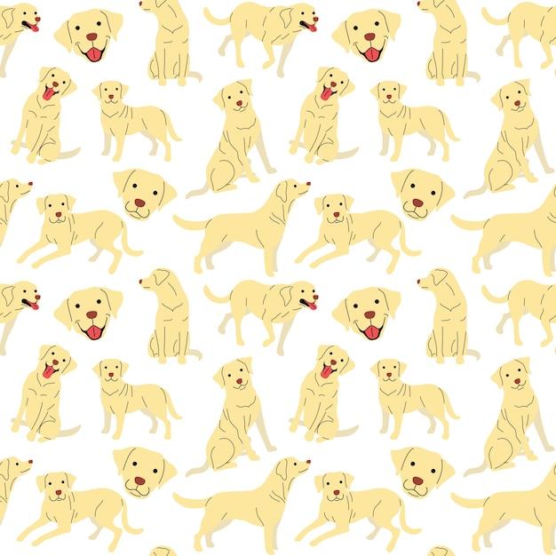 Modello di labrador, cane pose Vettore Premium