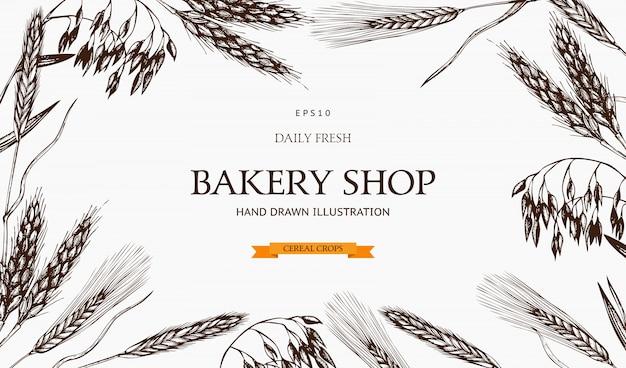 Modello di piante fresche e biologiche dell'azienda agricola. colture di cereali disegnate a mano. logo di panetteria. Vettore Premium