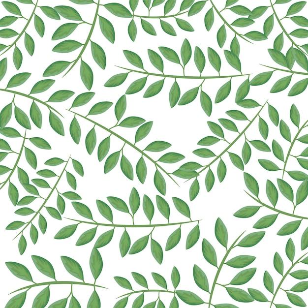 Modello di rami con foglie naturali Vettore Premium