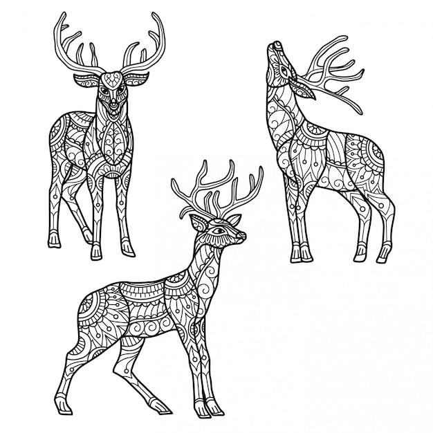 Modello di renne. illustrazione di schizzo disegnato a mano per libro da colorare per adulti Vettore Premium