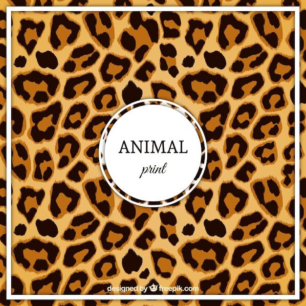 Modello leopard Vettore gratuito
