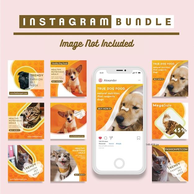 Modello promozionale quadrato social media negozio di animali Vettore Premium