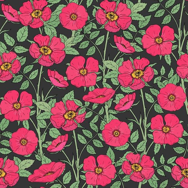 Modello senza cuciture floreale con rose canine in fiore, steli verdi e foglie su sfondo scuro. Vettore Premium
