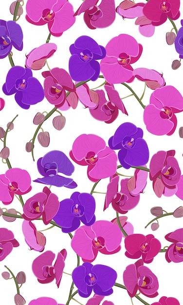 Modello senza cuciture floreale dell'orchidea rosa e porpora Vettore Premium