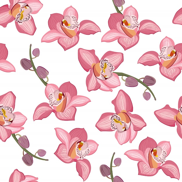 Modello senza cuciture floreale dell'orchidea rosa. i fiori sbocciano fogliame fiore Vettore Premium