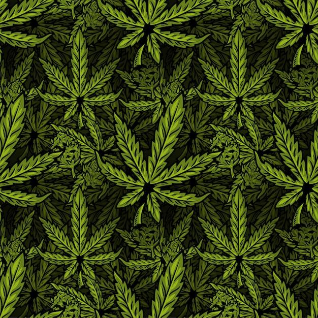 Modello tessile senza soluzione di continuità con foglie di bio pianta naturale eco di marijuana, cannabis, erba, olio di canapa cbd, cannabis medica thc con gemma. illustrazione di design di stampa moderna per poster, adesivo, banner, vestiti. Vettore Premium