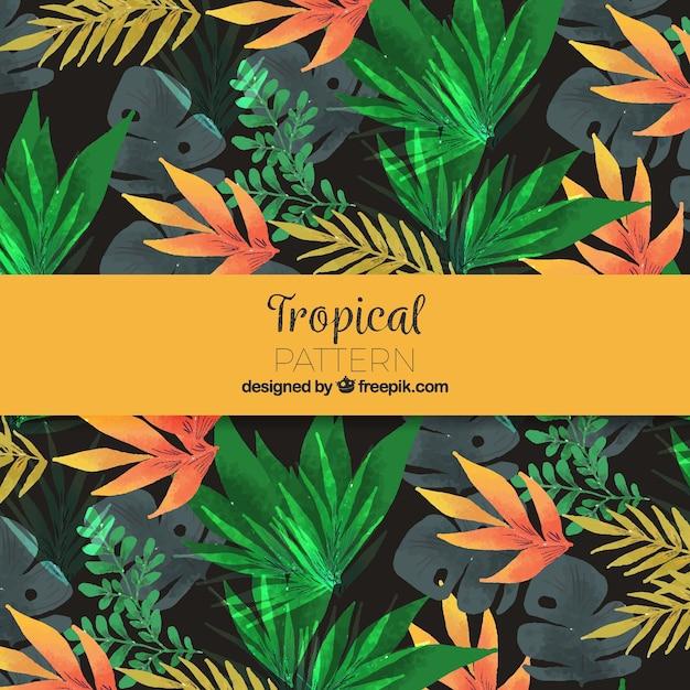 Modello tropicale acquerello colorato Vettore gratuito