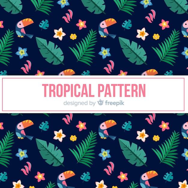 Modello tropicale colorato con tucano e foglie Vettore gratuito