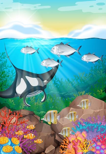 Molti pesci nuotano sotto l'oceano Vettore gratuito