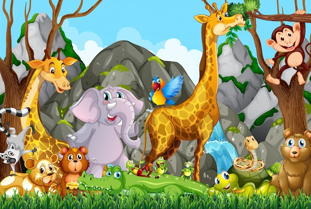 Molti simpatici animali nella foresta Vettore gratuito