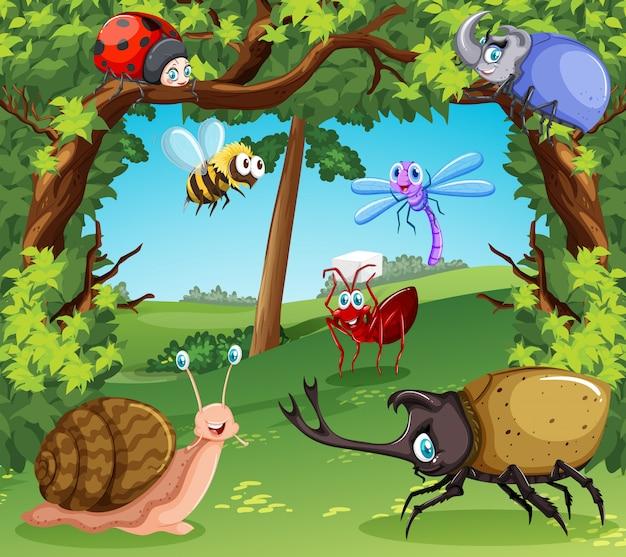 Molti tipi di insetti nella foresta Vettore gratuito