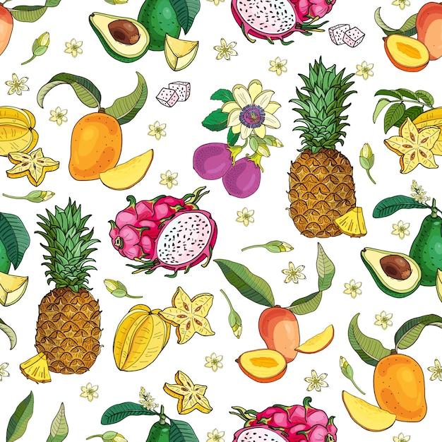 Motivo di frutti esotici Vettore Premium