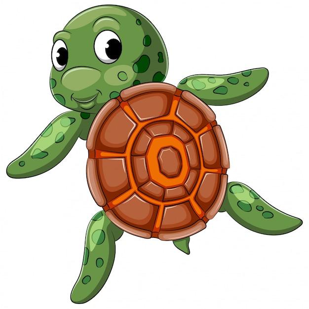 Nuoto carino tartaruga con buona posa Vettore Premium